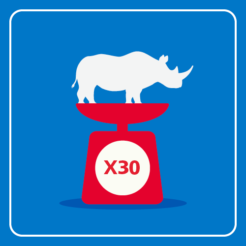 A rhino is standing on top of weighing scales which indicates the weight is 30 rhinos.